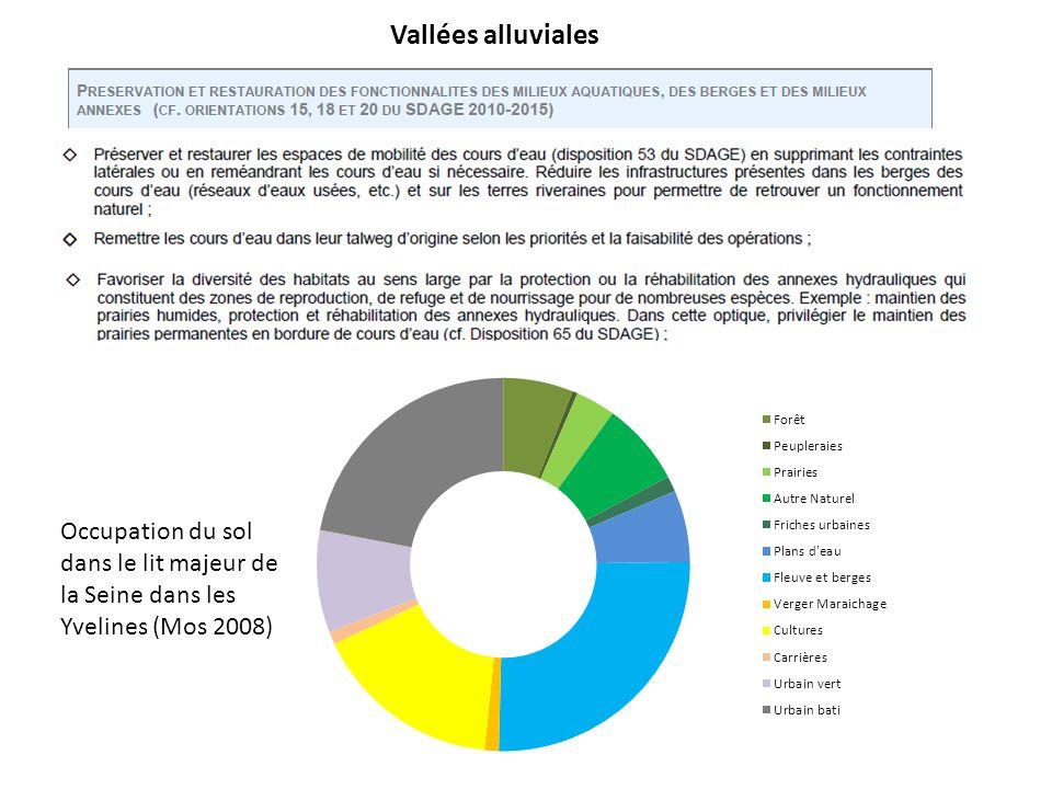 Vallées alluviales Occupation du sol dans le lit majeur de la Seine dans les Yvelines (Mos 2008)