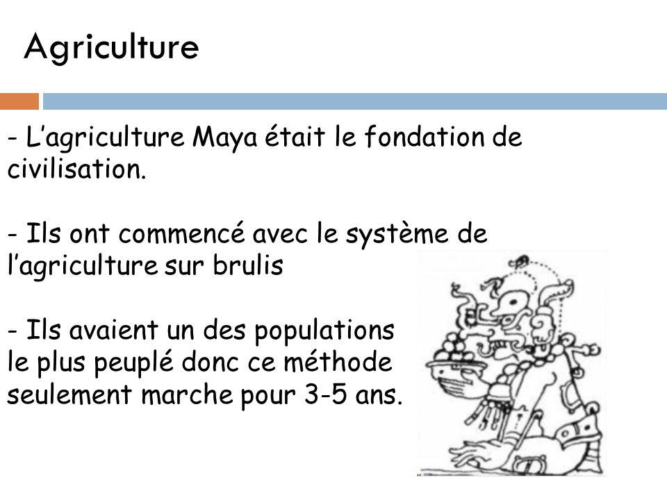 Agriculture - L'agriculture Maya était le fondation de civilisation.