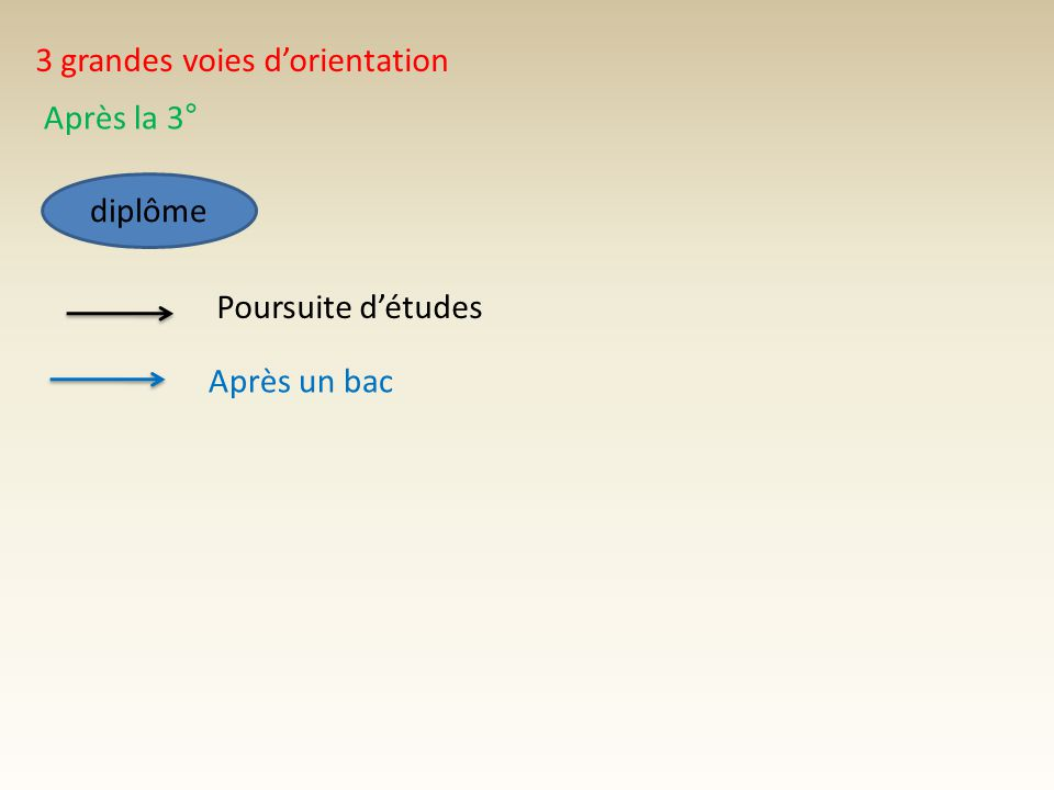 3 grandes voies d'orientation