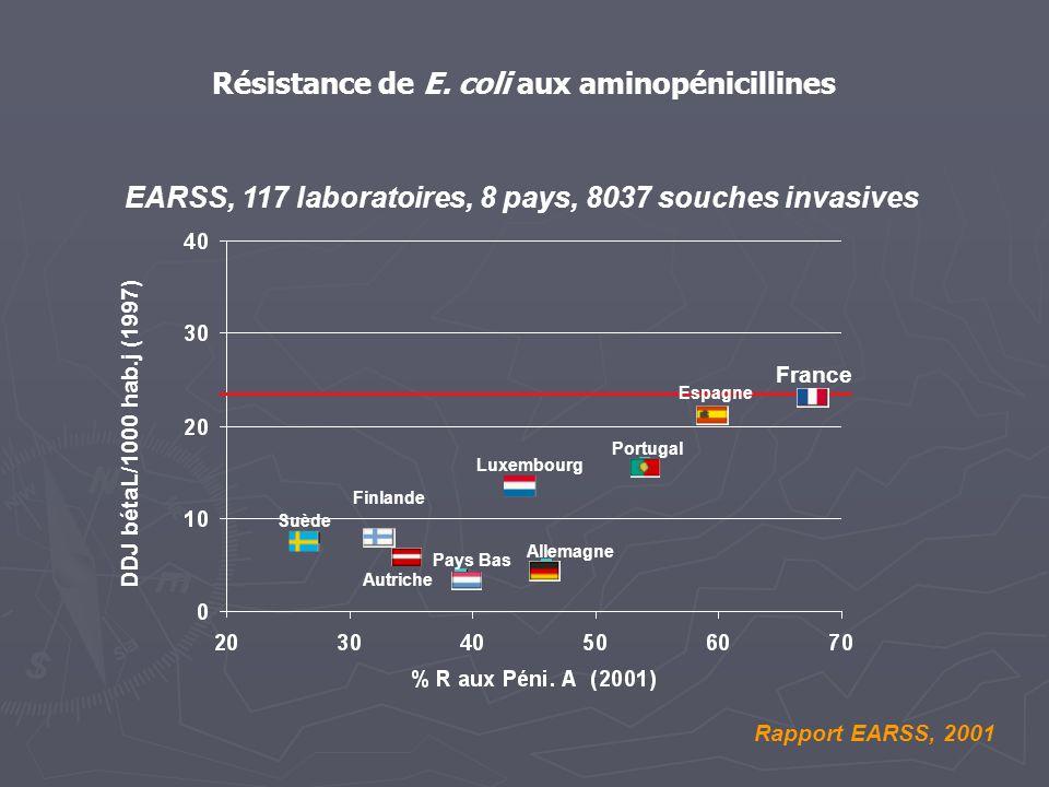 Résistance de E. coli aux aminopénicillines