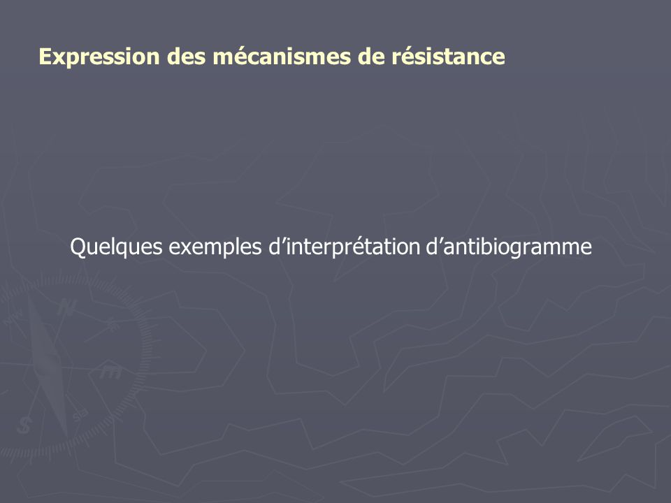 Quelques exemples d'interprétation d'antibiogramme