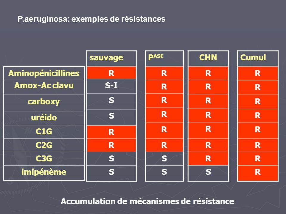 Accumulation de mécanismes de résistance