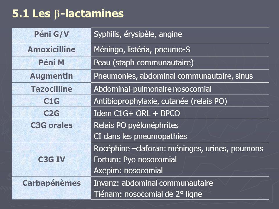 5.1 Les -lactamines Péni G/V Syphilis, érysipèle, angine Amoxicilline
