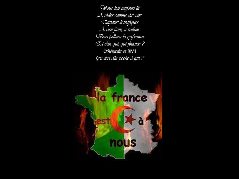 Vous êtes toujours là À rôder comme des rats. Toujours à trafiquer. À rien faire, à traîner. Vous polluez la France.