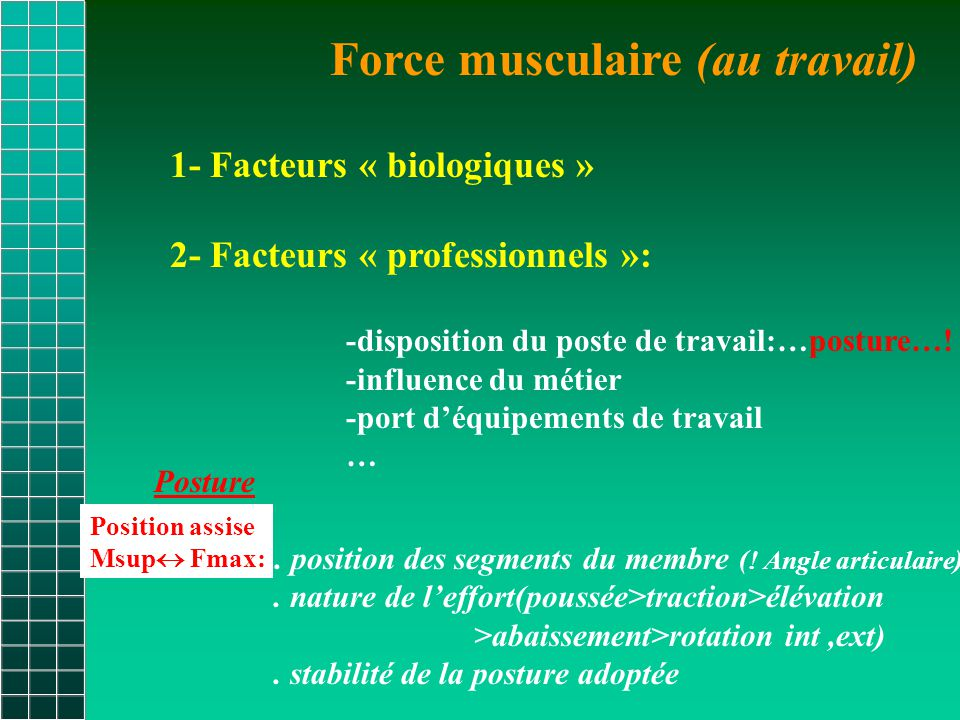 Force musculaire (au travail)