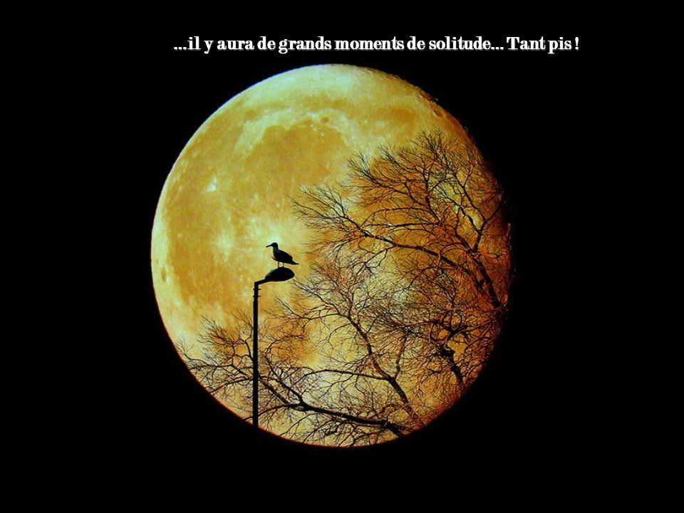 …il y aura de grands moments de solitude… Tant pis !
