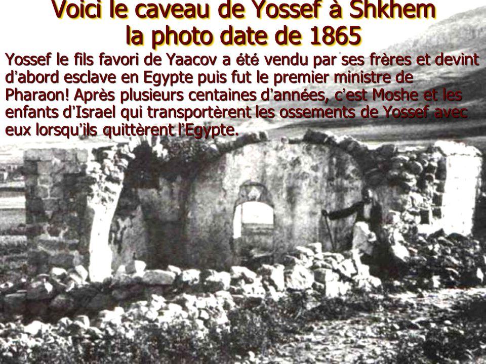 Voici le caveau de Yossef à Shkhem la photo date de 1865