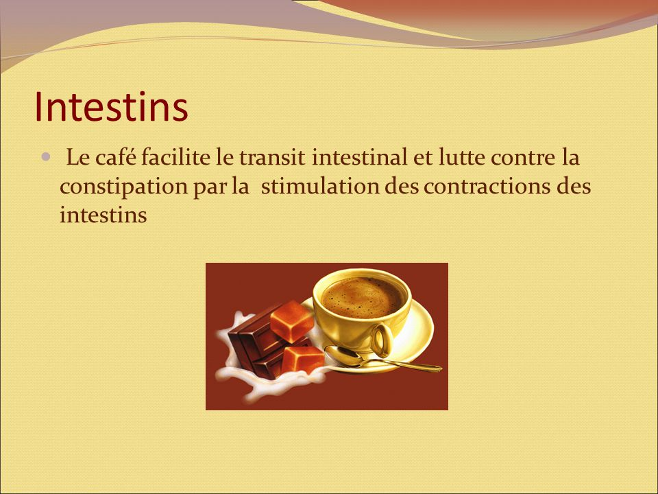 Intestins Le café facilite le transit intestinal et lutte contre la constipation par la stimulation des contractions des intestins.