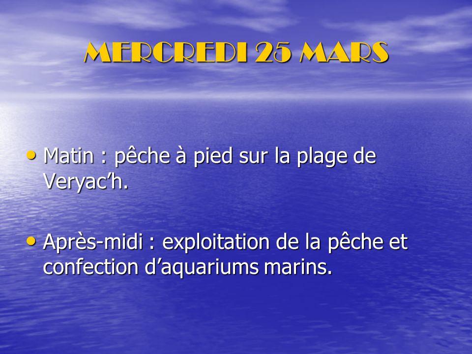 MERCREDI 25 MARS Matin : pêche à pied sur la plage de Veryac'h.