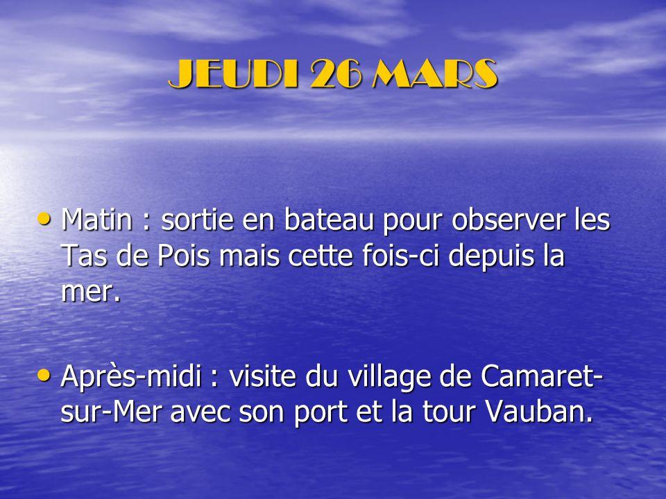JEUDI 26 MARS Matin : sortie en bateau pour observer les Tas de Pois mais cette fois-ci depuis la mer.