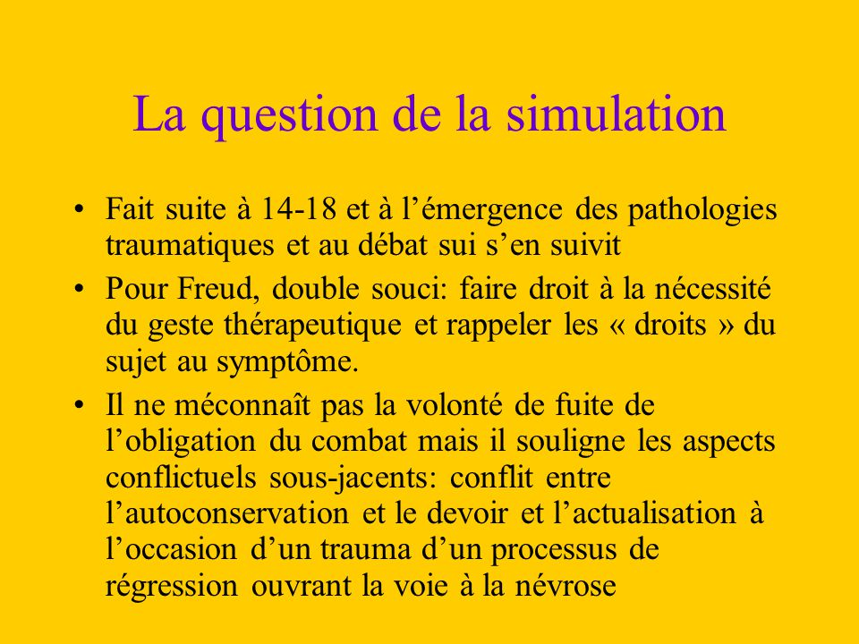 La question de la simulation