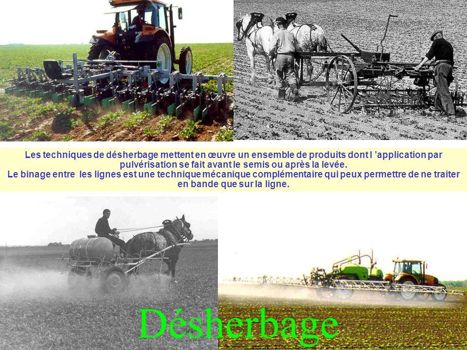 Les techniques de désherbage mettent en œuvre un ensemble de produits dont l 'application par pulvérisation se fait avant le semis ou après la levée.