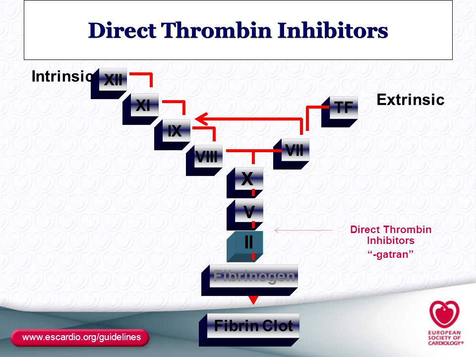 Direct Thrombin Inhibitors