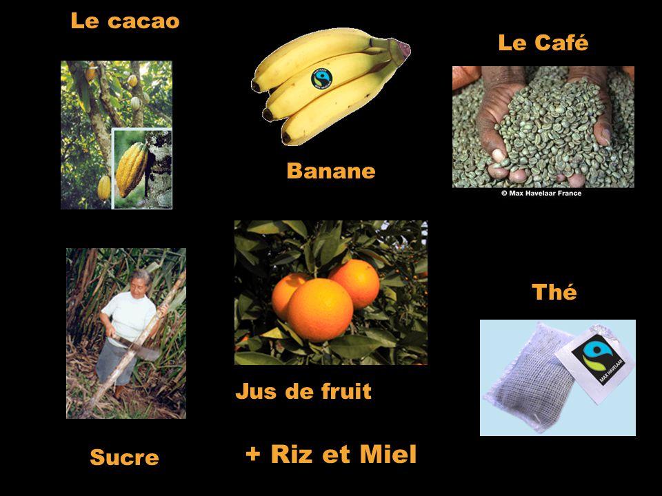 Le cacao Le Café. Banane.