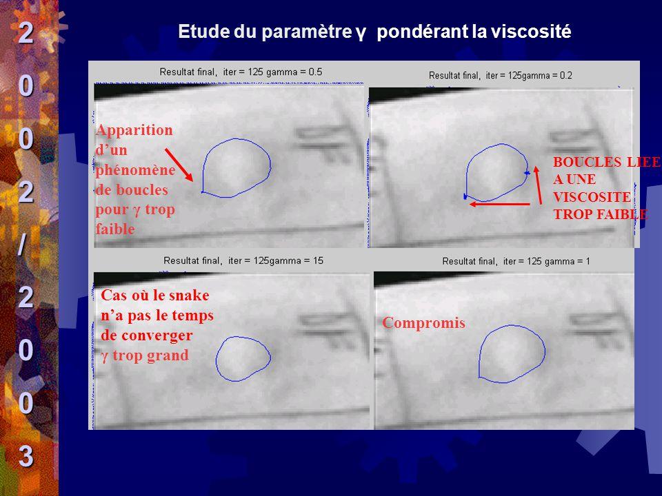 2 / 3 Etude du paramètre γ pondérant la viscosité