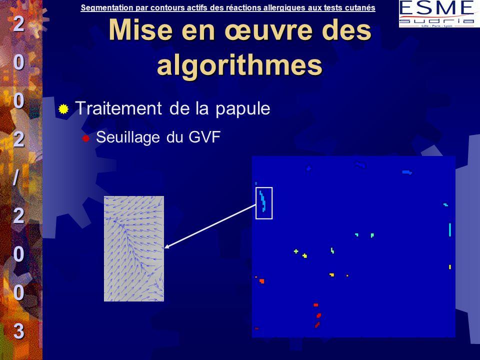 Mise en œuvre des algorithmes