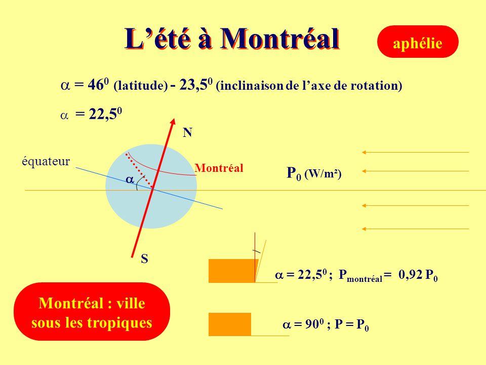 Montréal : ville sous les tropiques