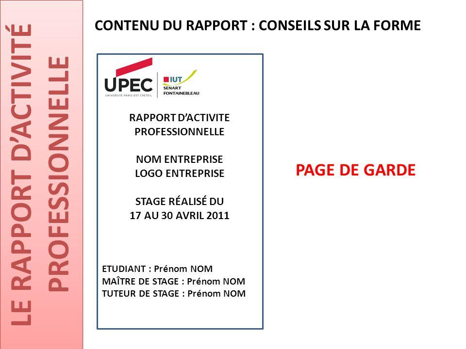 RAPPORT D'ACTIVITE PROFESSIONNELLE