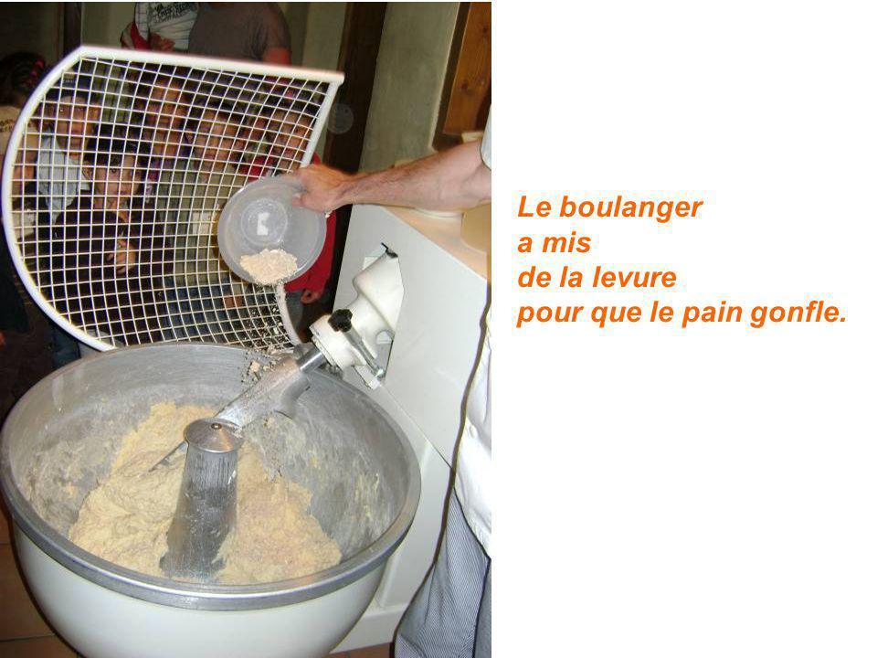 Le boulanger a mis de la levure pour que le pain gonfle.