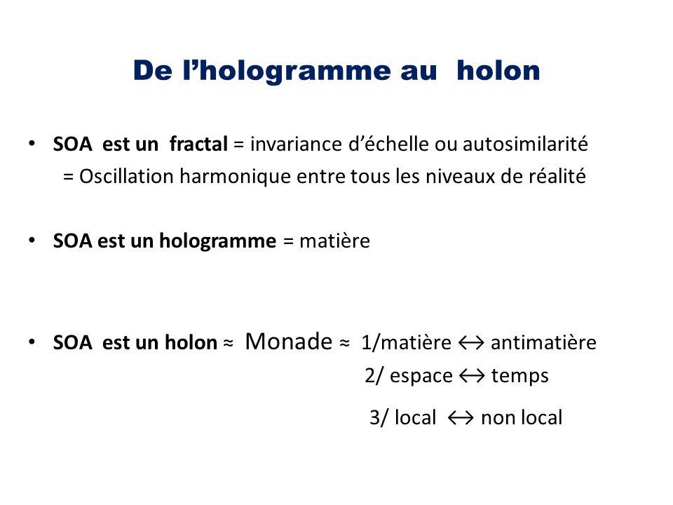 De l'hologramme au holon