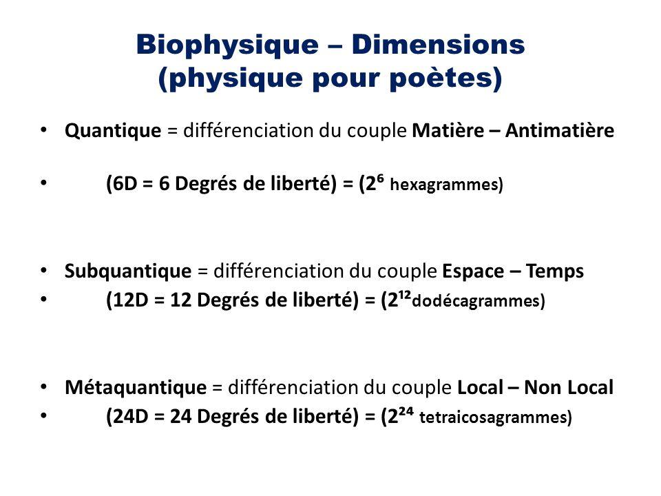 Biophysique – Dimensions (physique pour poètes)