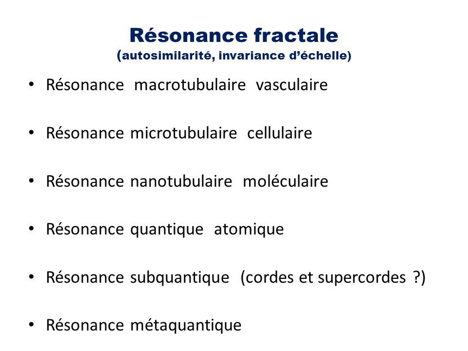 Résonance fractale (autosimilarité, invariance d'échelle)