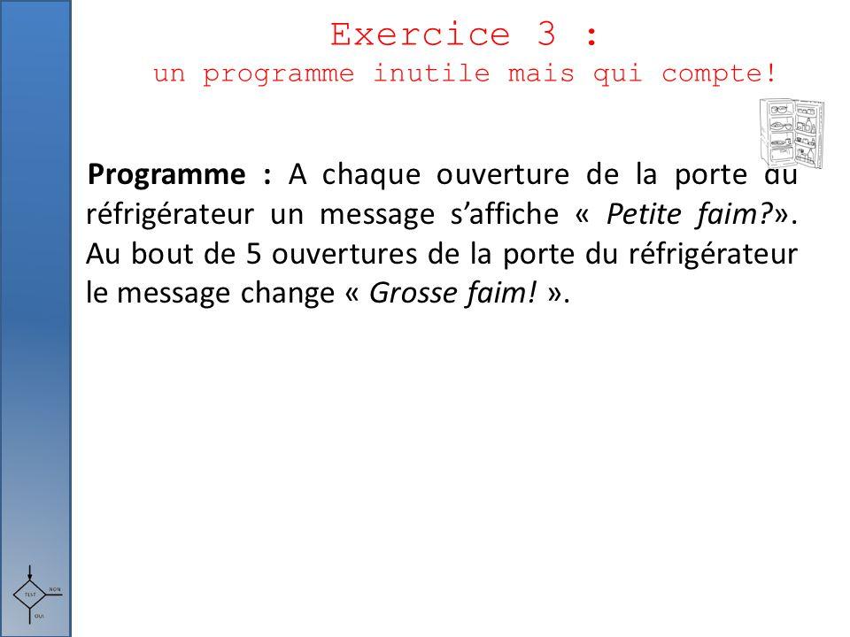 Exercice 3 : un programme inutile mais qui compte!
