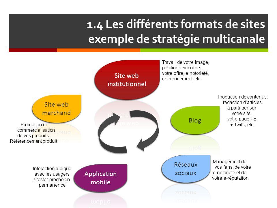 1.4 Les différents formats de sites exemple de stratégie multicanale