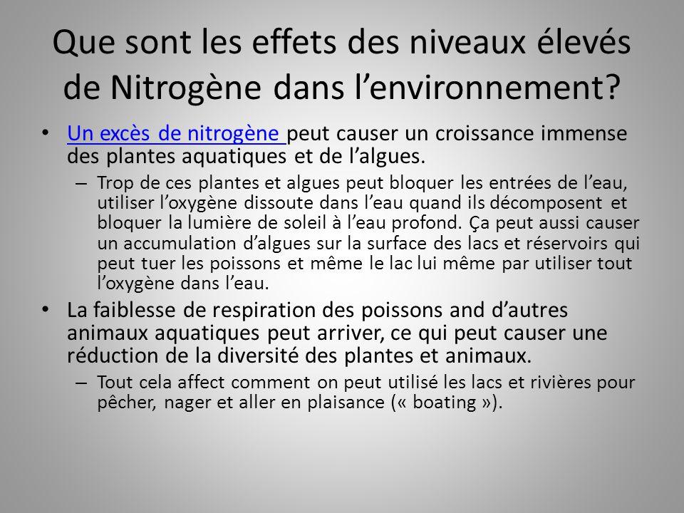 Que sont les effets des niveaux élevés de Nitrogène dans l'environnement