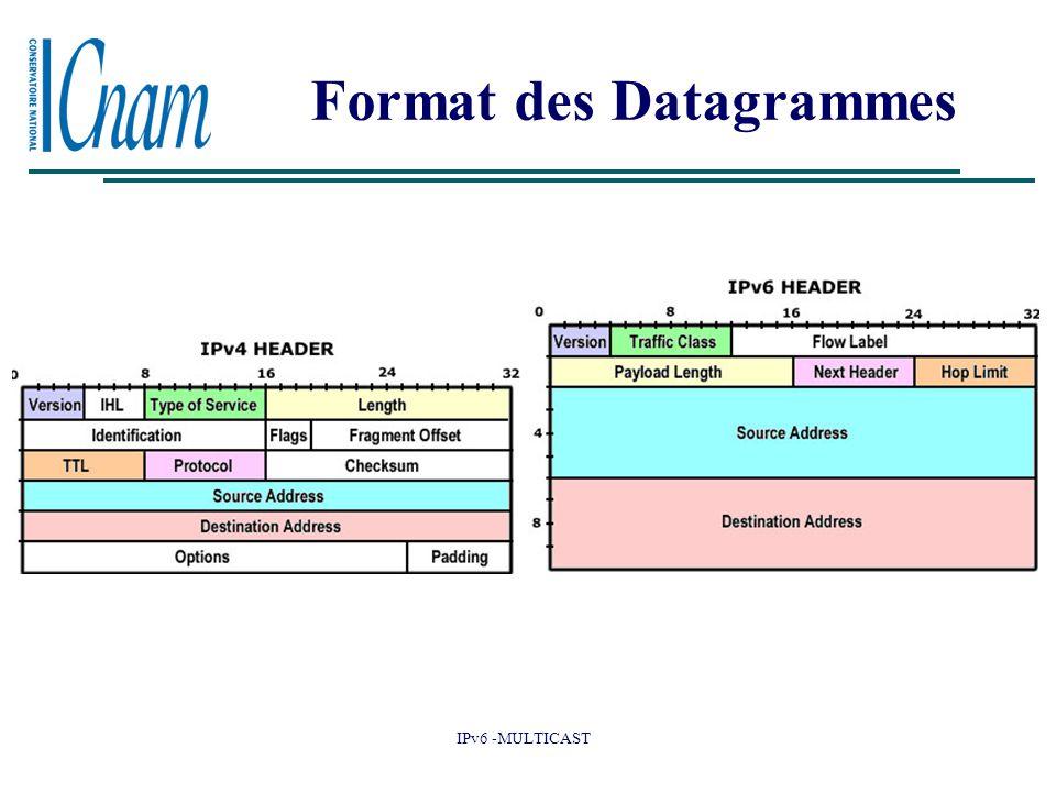 Format des Datagrammes