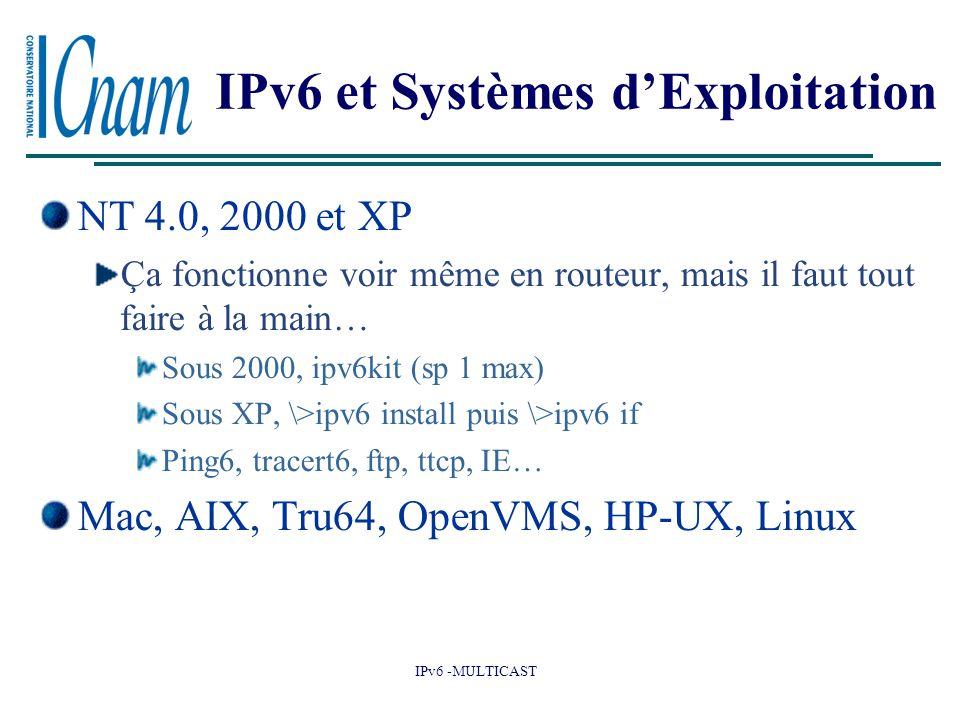IPv6 et Systèmes d'Exploitation