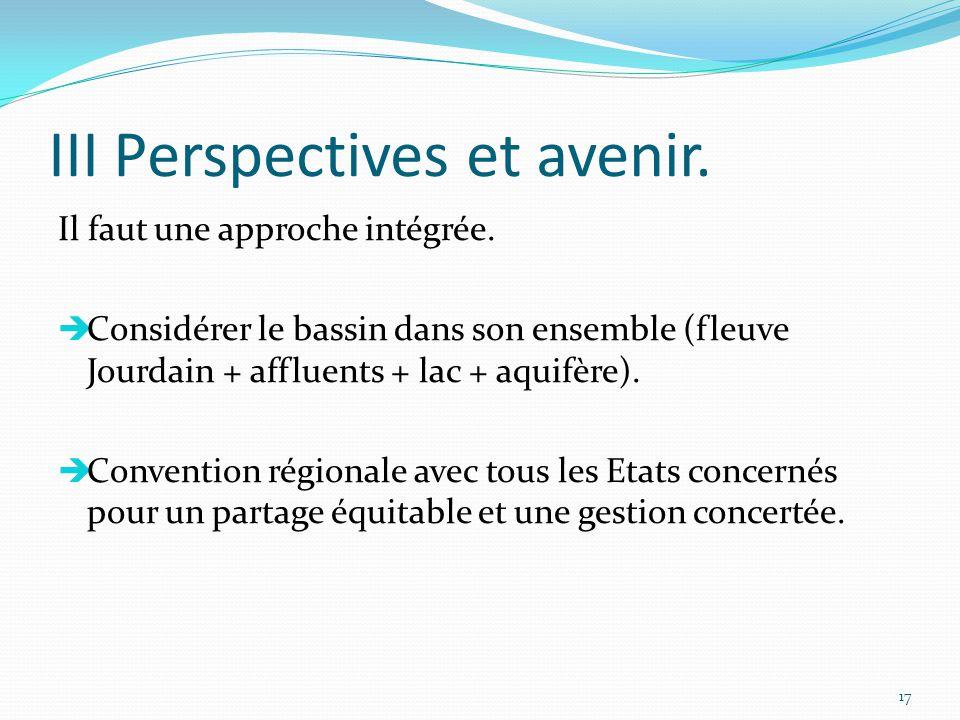 III Perspectives et avenir.