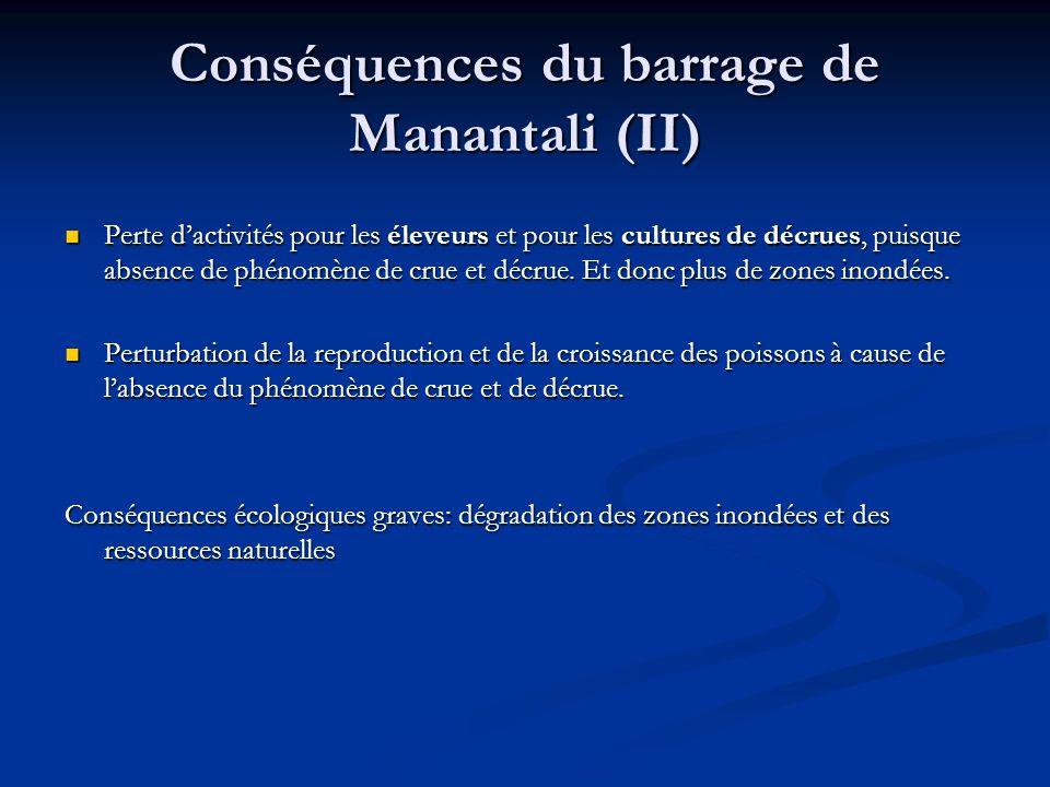 Conséquences du barrage de Manantali (II)