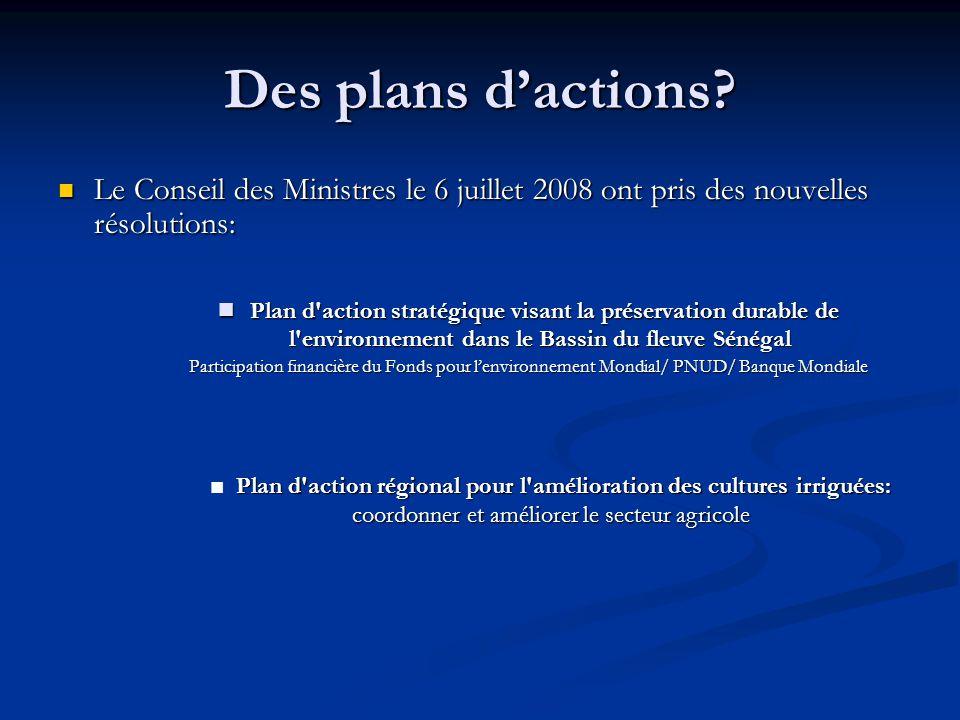 Des plans d'actions Le Conseil des Ministres le 6 juillet 2008 ont pris des nouvelles résolutions: