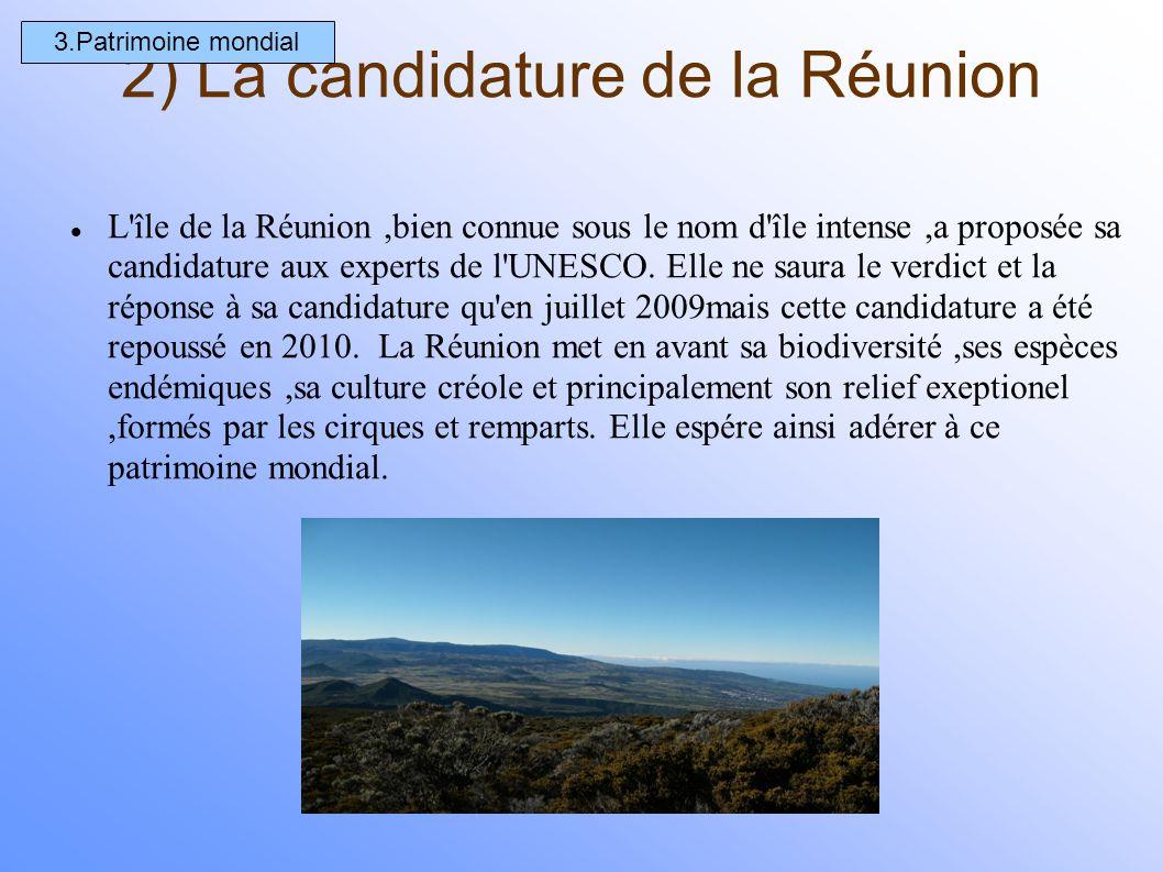 2) La candidature de la Réunion