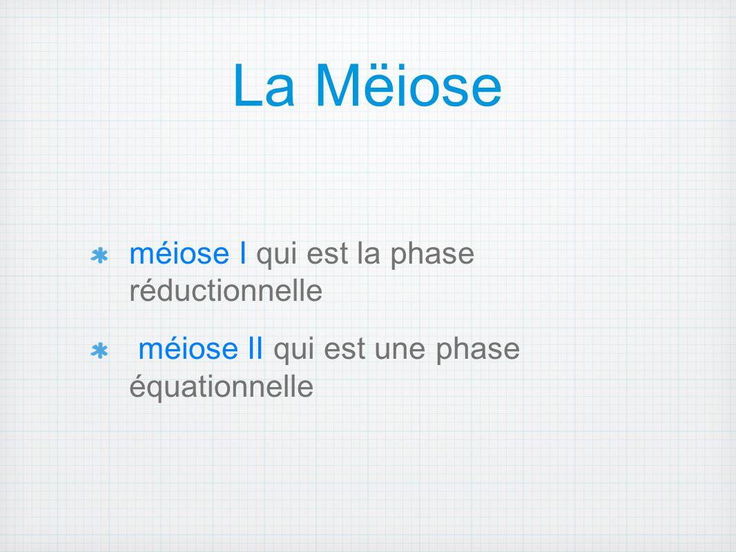 La Mëiose méiose I qui est la phase réductionnelle