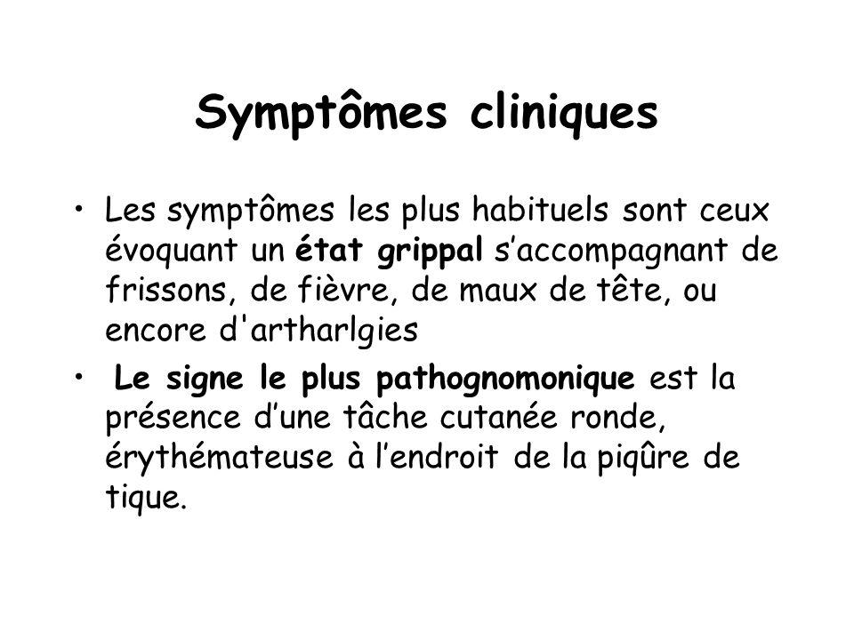 Symptômes cliniques