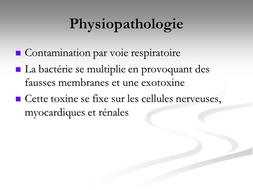 Physiopathologie Contamination par voie respiratoire