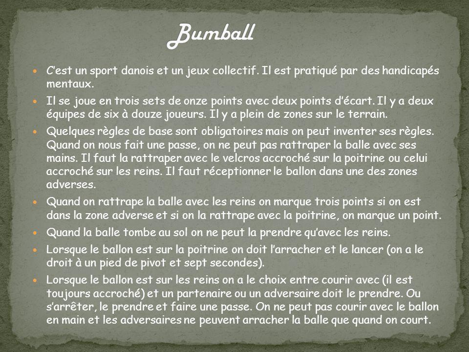Bumball C'est un sport danois et un jeux collectif. Il est pratiqué par des handicapés mentaux.