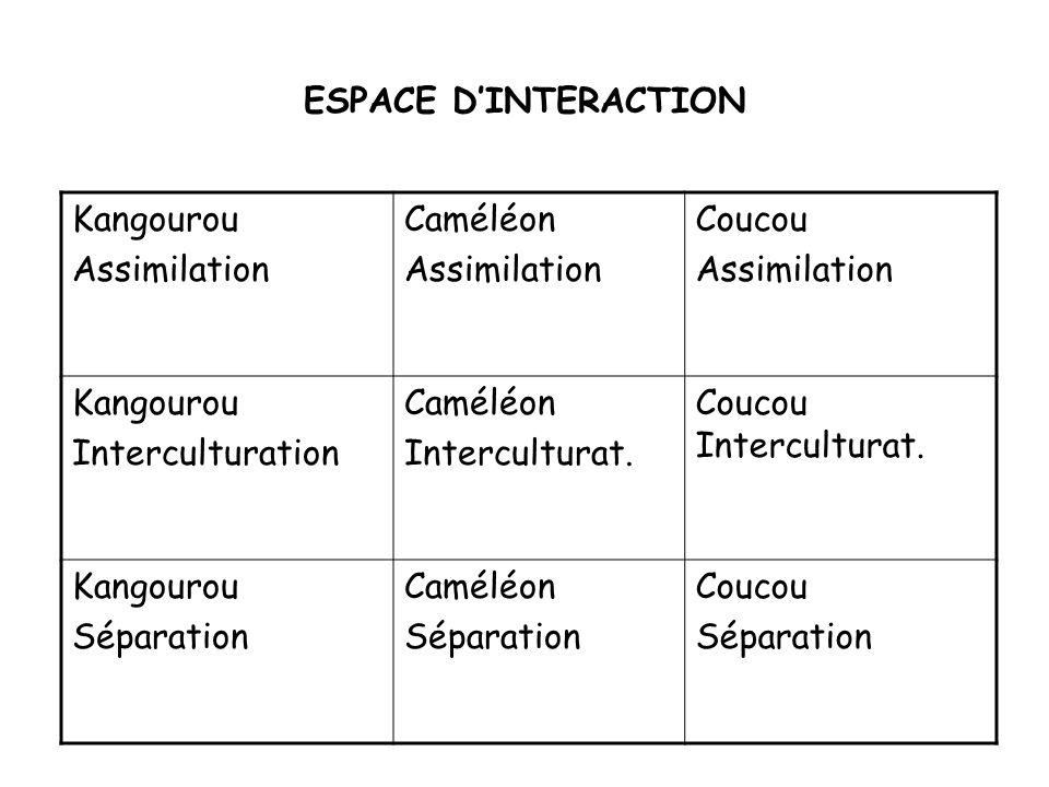 ESPACE D'INTERACTION Kangourou. Assimilation. Caméléon. Coucou. Interculturation. Interculturat.