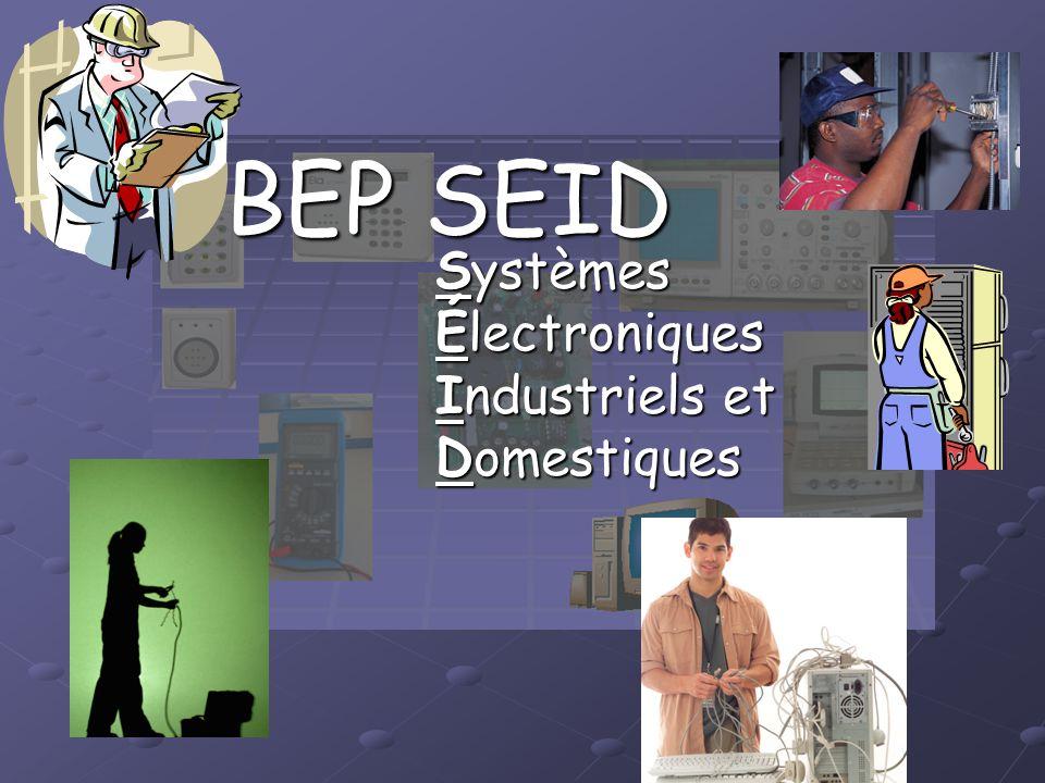 BEP SEID Systèmes Électroniques Industriels et Domestiques