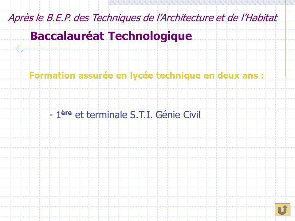 Baccalauréat Technologique