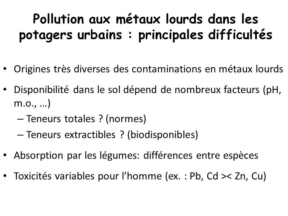 Pollution aux métaux lourds dans les potagers urbains : principales difficultés