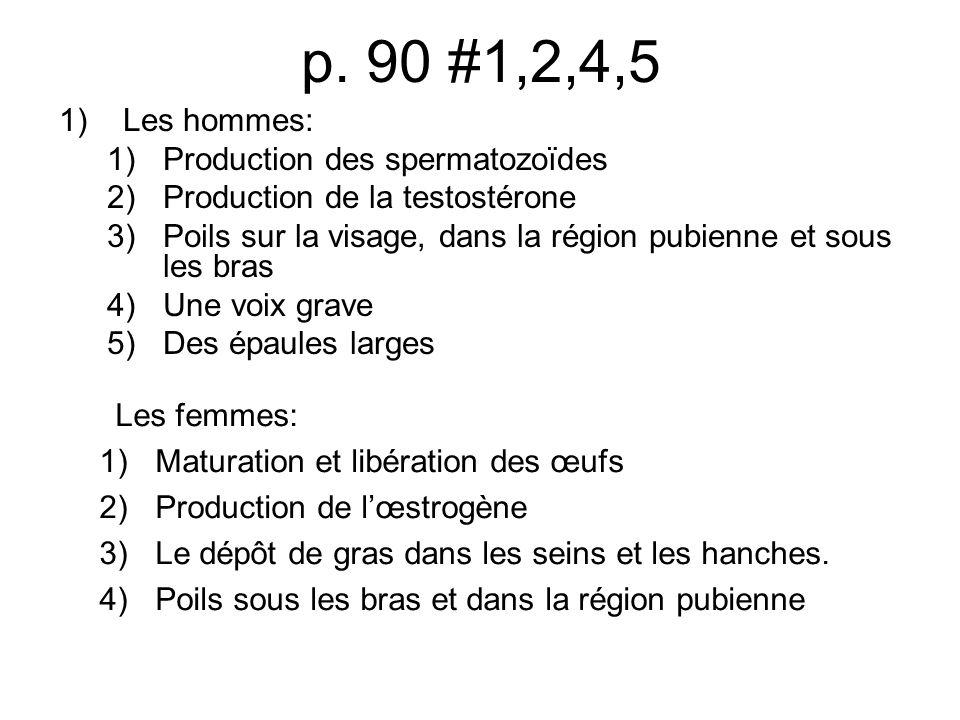 p. 90 #1,2,4,5 Les hommes: Production des spermatozoïdes