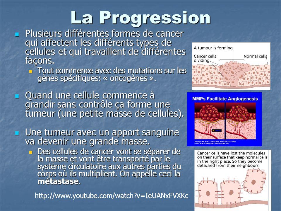 La Progression Plusieurs différentes formes de cancer qui affectent les différents types de cellules et qui travaillent de différentes façons.