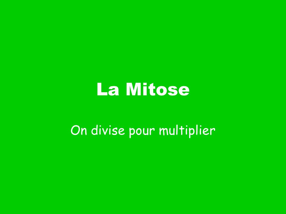 On divise pour multiplier