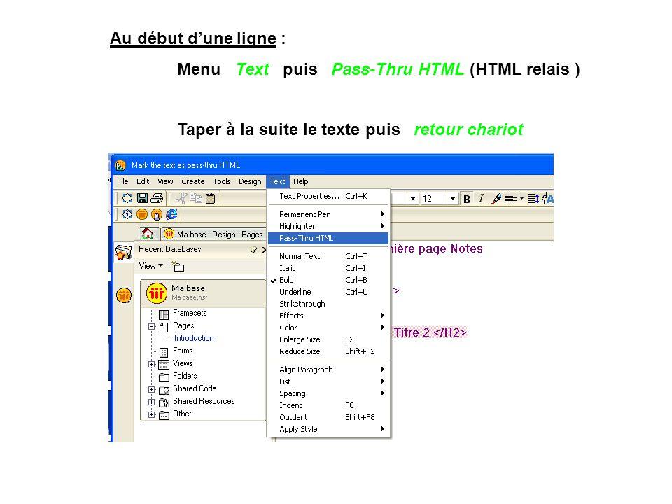Au début d'une ligne : Menu Text puis Pass-Thru HTML (HTML relais ) Taper à la suite le texte puis retour chariot.