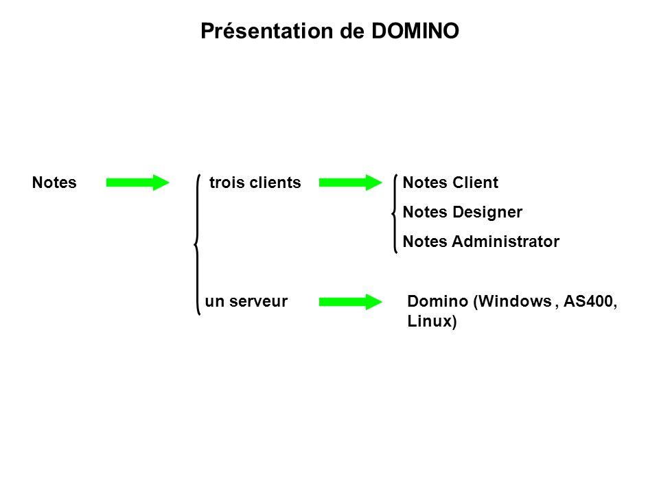 Présentation de DOMINO