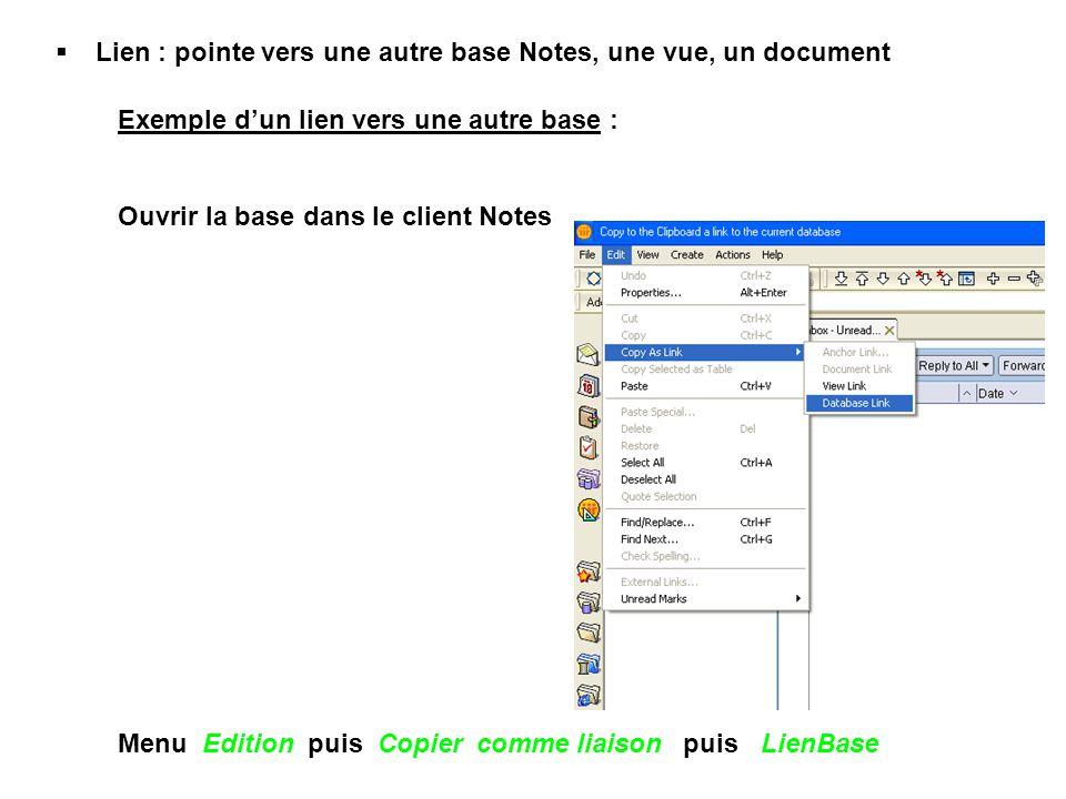 Lien : pointe vers une autre base Notes, une vue, un document