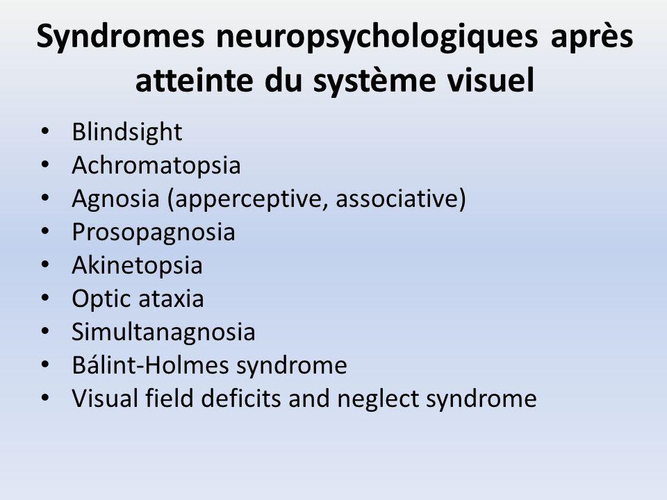 Syndromes neuropsychologiques après atteinte du système visuel